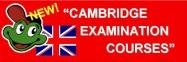 widget-cambridge-face-e1400232448627