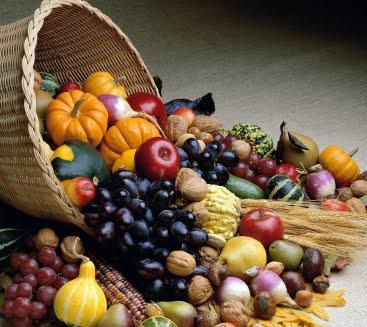 alimentos-otoño-campamentos
