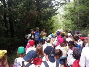 colonies-escolars-prades-edulonia (2)