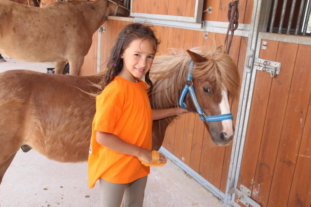 pony-campamentos-ingles-englishsummersa