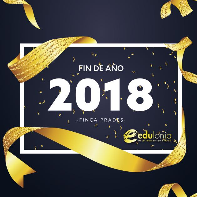 fin-de-año-2018