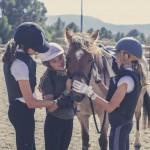 Campamentos-verano-temáticos-horsecamp77