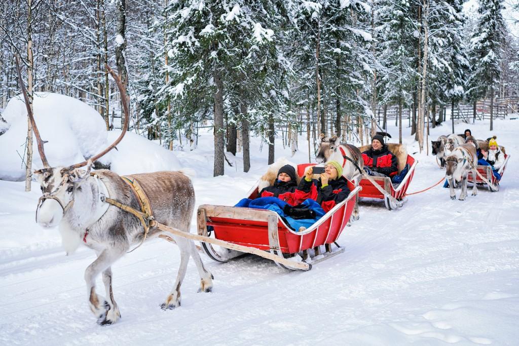 People in Reindeer sledge caravan safari in winter forest Rovaniemi